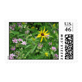 summer meadow stamp