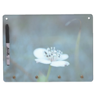 Summer Memories Dry Erase Board With Keychain Holder