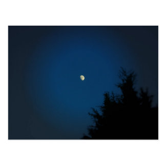 Summer Moon - Postcard