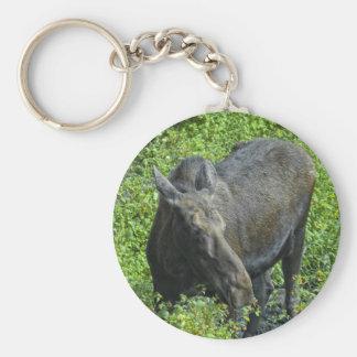 summer moose keychain
