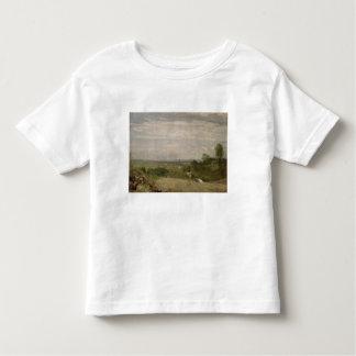 Summer Morning: Dedham from Langham Toddler T-shirt