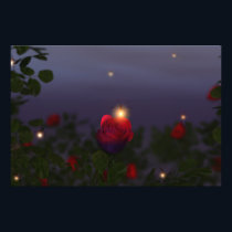 Summer Nightlights Photo Print