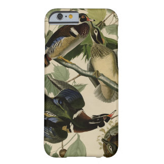 Summer or Wood Duck Barely There iPhone 6 Case