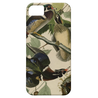 Summer or Wood Duck iPhone SE/5/5s Case