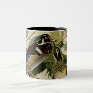 Summer or Wood Duck Two-Tone Coffee Mug
