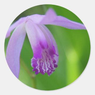 Summer Orchid! Classic Round Sticker