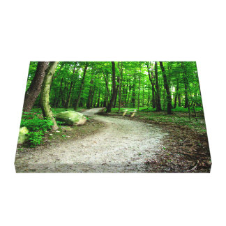 SUMMER PATH - Wrapped Canvas Gallery Wrap Canvas