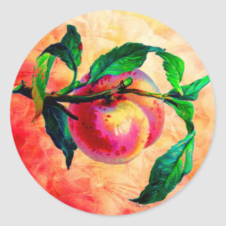 SUMMER PEACH.jpg Classic Round Sticker