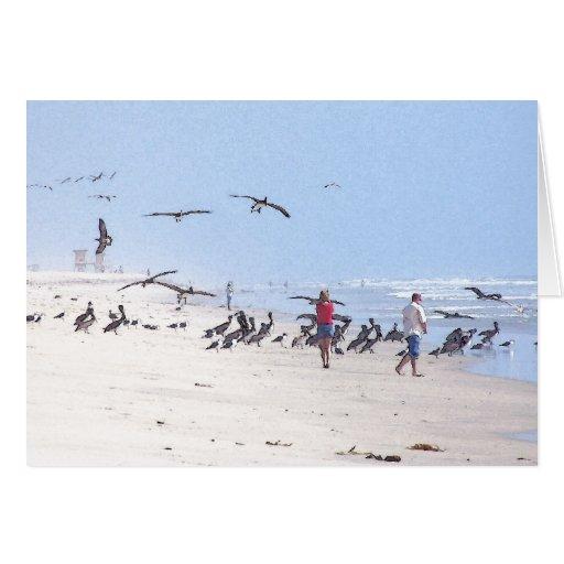 Summer Pelicans Card