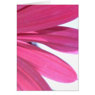 Summer Pink Flower Card