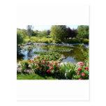 summer pond postcard