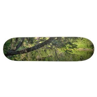 Summer Pond Skateboard Deck