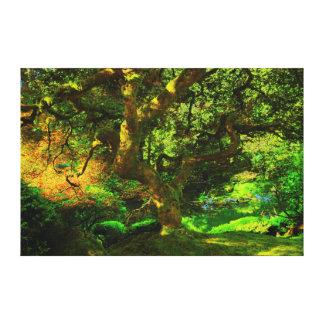 Summer, Portland Japanese Garden, Portland Canvas Print