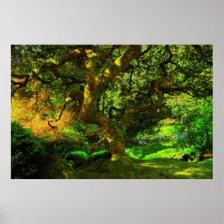 Summer, Portland Japanese Garden, Portland Poster