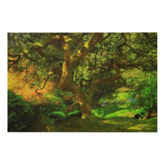 Summer, Portland Japanese Garden, Portland Wood Wall Art