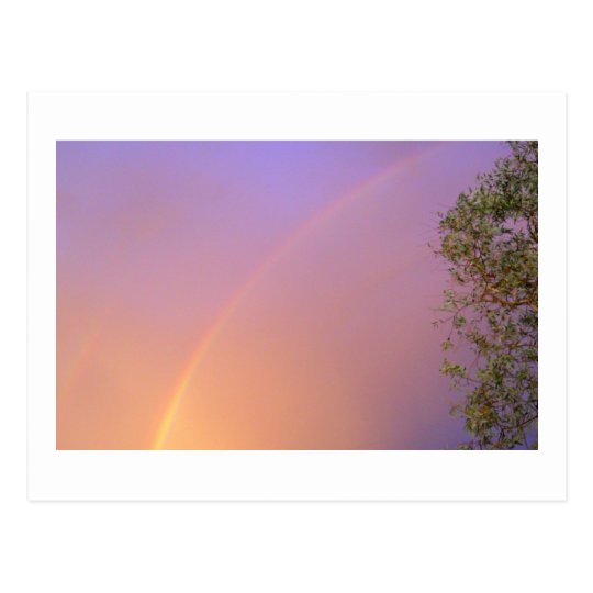 Summer Rainbow Postcard