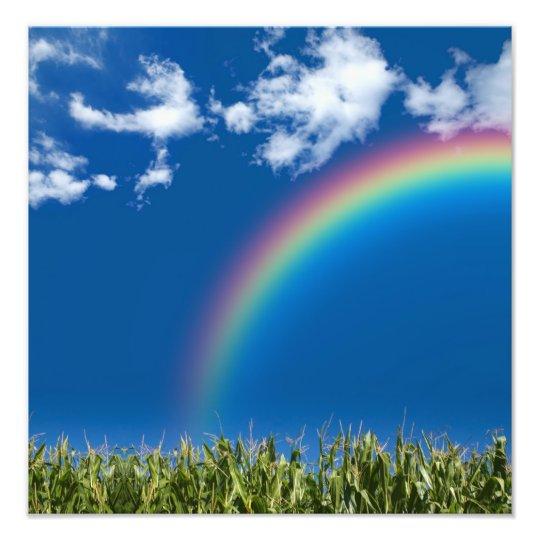 Summer Rainbow Wall Print