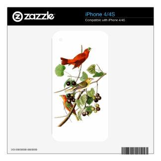 Summer Red Bird John James Audubon Birds America Decals For iPhone 4