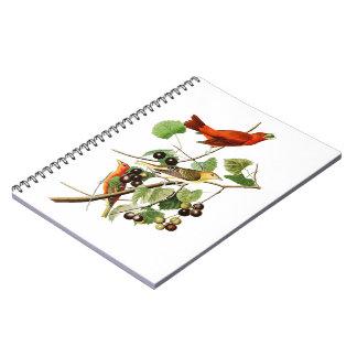 Summer Red Bird John James Audubon Birds America Spiral Notebook