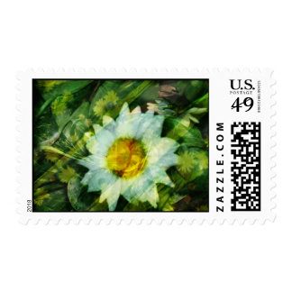 Summer Reflections Postage