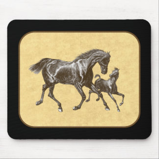 Summer romp horses mouse pad
