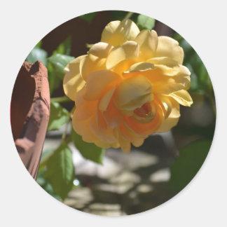 Summer Rose Garden Classic Round Sticker