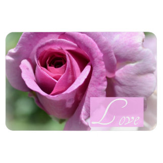 Summer Rose Magnet