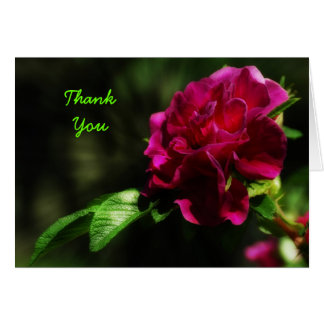 Summer Rose Thank You card