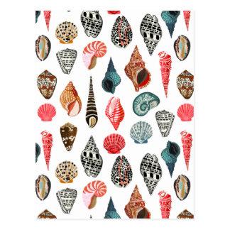 Summer Seashell Shell Nautical / Andrea Lauren Postcard