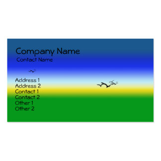 Summer Skies Double-Sided Standard Business Cards (Pack Of 100)