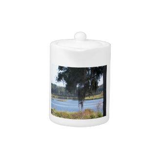 Summer southern lake reflections teapot