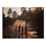 Summer Splash postcard