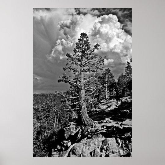 Summer storm Lake Tahoe, Poster