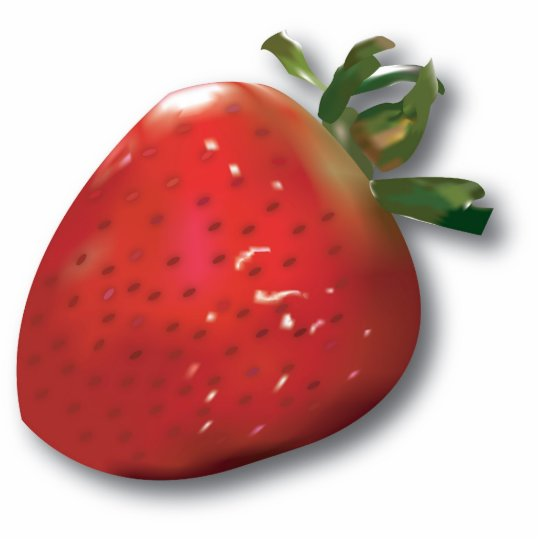 Summer Strawberry Magnet