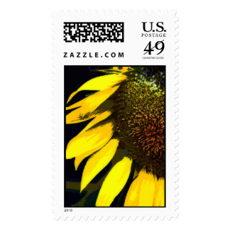 Summer Sun Postage Stamps