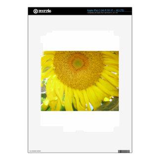 Summer Sunflower iPad 3 Decal