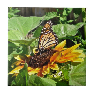 Summer Sunflower with Beautiful Butterfly Photo Ceramic Tile