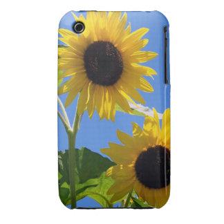 Summer Sunflowers iPhone 3 Case