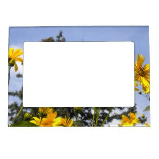 Summer Sunflowers Magnetic  Photo Frame Magnetic Photo Frames