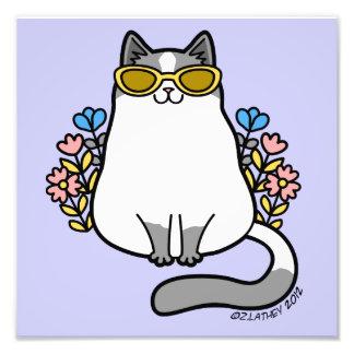 Summer Sunglasses Kitty Cat - Gray and White Photo Art