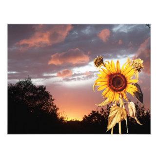 SUMMER SUNSET PHOTO PRINT
