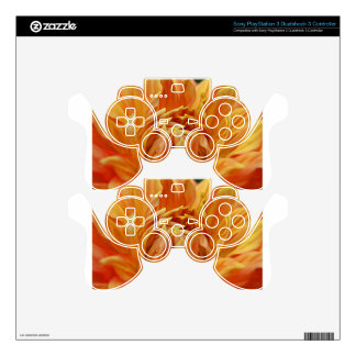 Summer Tales PS3 Controller Skins