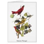 Summer Tanager by John Audubon Greeting Card