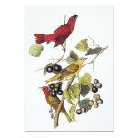 Summer Tanager by John Audubon 5x7 Paper Invitation Card
