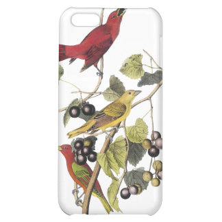 Summer Tanager by John Audubon iPhone 5C Covers