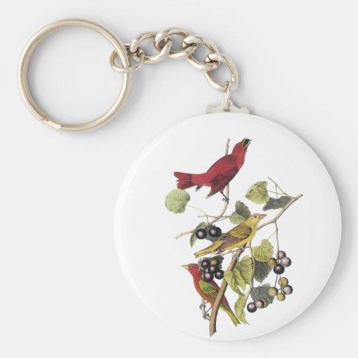 Summer Tanager by John Audubon Key Chains