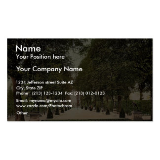 Summer theatre at Herrenhausen, Hanover, Hanover, Double-Sided Standard Business Cards (Pack Of 100)