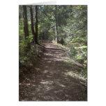 Summer Trail Greeting Card