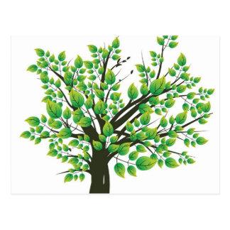 Summer Tree Post Card