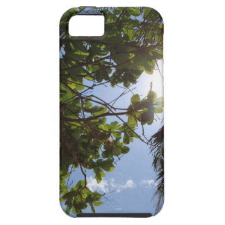 Summer Trees iPhone SE/5/5s Case